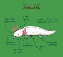 Anatomy of an Axolotl One Piece - Short Sleeve