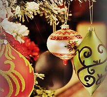 Traditional Ornaments by Heather A McGhee