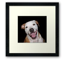 Chase smiles Framed Print