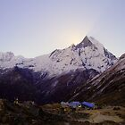 Annapurna Base Camp, Nepal. by Andy Newman