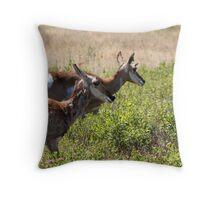 Doe Pronghorn Throw Pillow