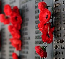 Rememberance by Tainia Finlay