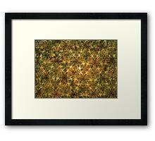 Unnamed. Framed Print