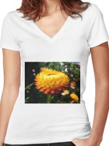 Xerochrysum bracteatum, Flower with added texture Women's Fitted V-Neck T-Shirt