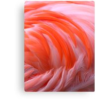 Flamingo Flame Canvas Print