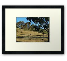 Just before dusk, south of Cook in Canberra.- Australia. Framed Print