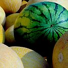 MELONS (WHITEFISH FARMER SERIES) by Thomas Barker-Detwiler