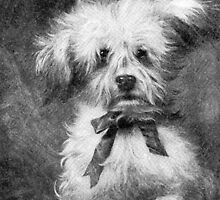 """Puppy """"Thinking of You"""" Card by Sharon Stevens"""