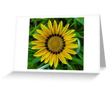 Symmetry In Yellow Greeting Card