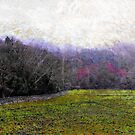 Along the River Mawddach by Linandara