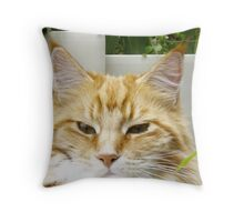 Mr. Inscrutable! Throw Pillow
