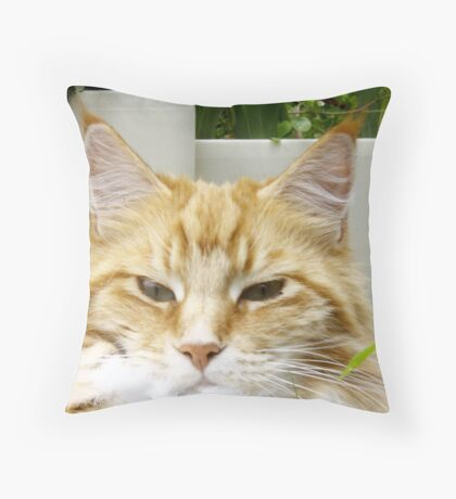 Mr. Inscrutable! Throw Pillow