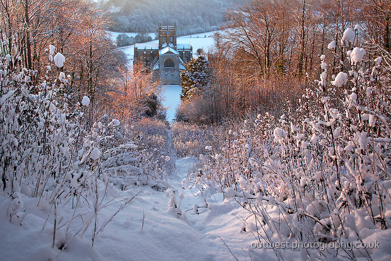 December Gold by outwest photography.co.uk