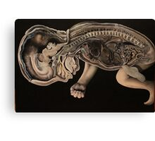 Baby Birtha Canvas Print