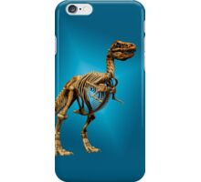 Dinosaur skeleton  iPhone Case/Skin