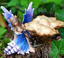 Fairy in the garden .... by lynn carter