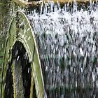 Working Water Wheel by SPPDesign