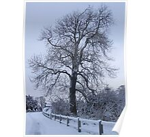 Winter Wonderland tree Poster