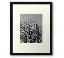 Penthouse Obstruction  Framed Print