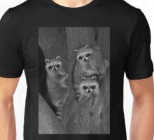 Three Baby Raccoons Unisex T-Shirt