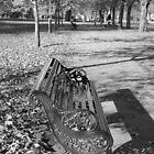 Bench by Paris Franz