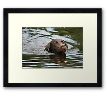 Loving the Water Framed Print