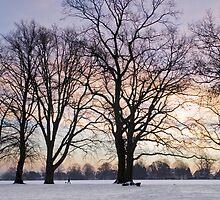 Winter Dawn by StephenRB