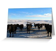 Are You Going to Feed Us or Not? Greeting Card