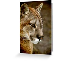 A pensive Puma portrait Greeting Card