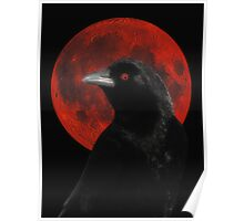 Crow And Red Moon Glow Poster
