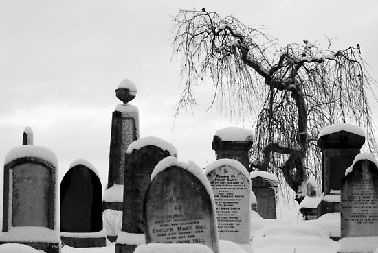 Mount Jerome cemetery in the snow by Esther  Molin