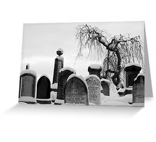 Mount Jerome cemetery in the snow Greeting Card