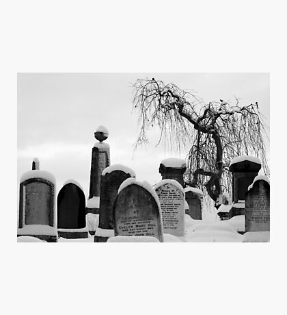 Mount Jerome cemetery in the snow Photographic Print