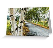 Birch Tree Lane Greeting Card