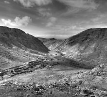 Fuerta Ventura B & W by Joe Freemantle