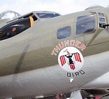 B-17 Bomber Mascot by SuddenJim