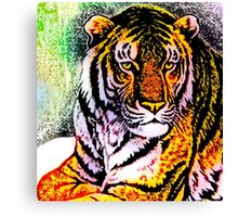 South China tiger Canvas Print