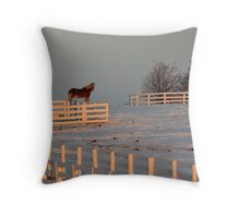 Cold Morning in Kentucky Throw Pillow