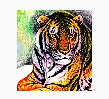 South China tiger Women's Fitted Scoop T-Shirt