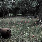 Olive Garden by Melissa Pinard