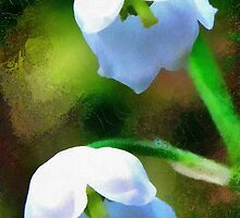 Lily of the valley by Lyz48