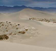 End of the Dunes by mikewheels