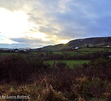 Winter afternoon, Carnlough Glen, County Antrim by Laura Butler