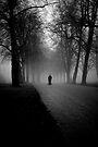 A gloomy Walk by Matt Sillence