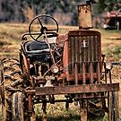 Grandpa's Tractor by anorth7
