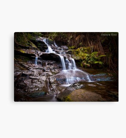 Cascading - Leura Canvas Print