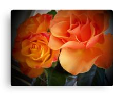 Peach Roses (1 of 2 )... Canvas Print