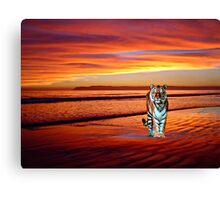 Looking for Pi Canvas Print