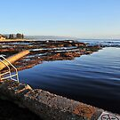 Wollongong Sea Baths by Bryan Cossart