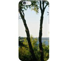 Lake Window iPhone Case/Skin
